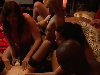 Dampness oral sex in a lusty swinger orgy